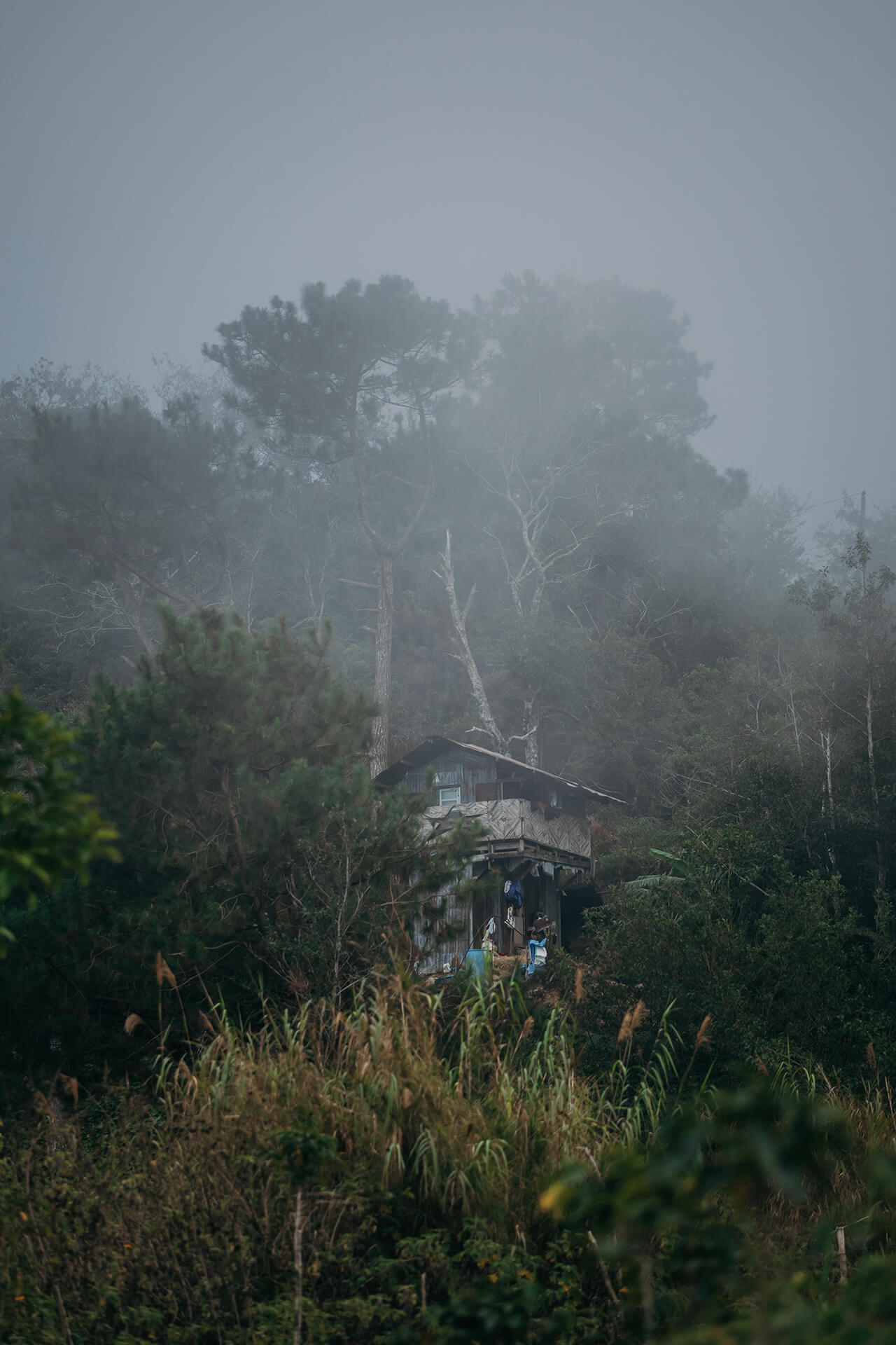 A mysterious and foggy view of Benguet