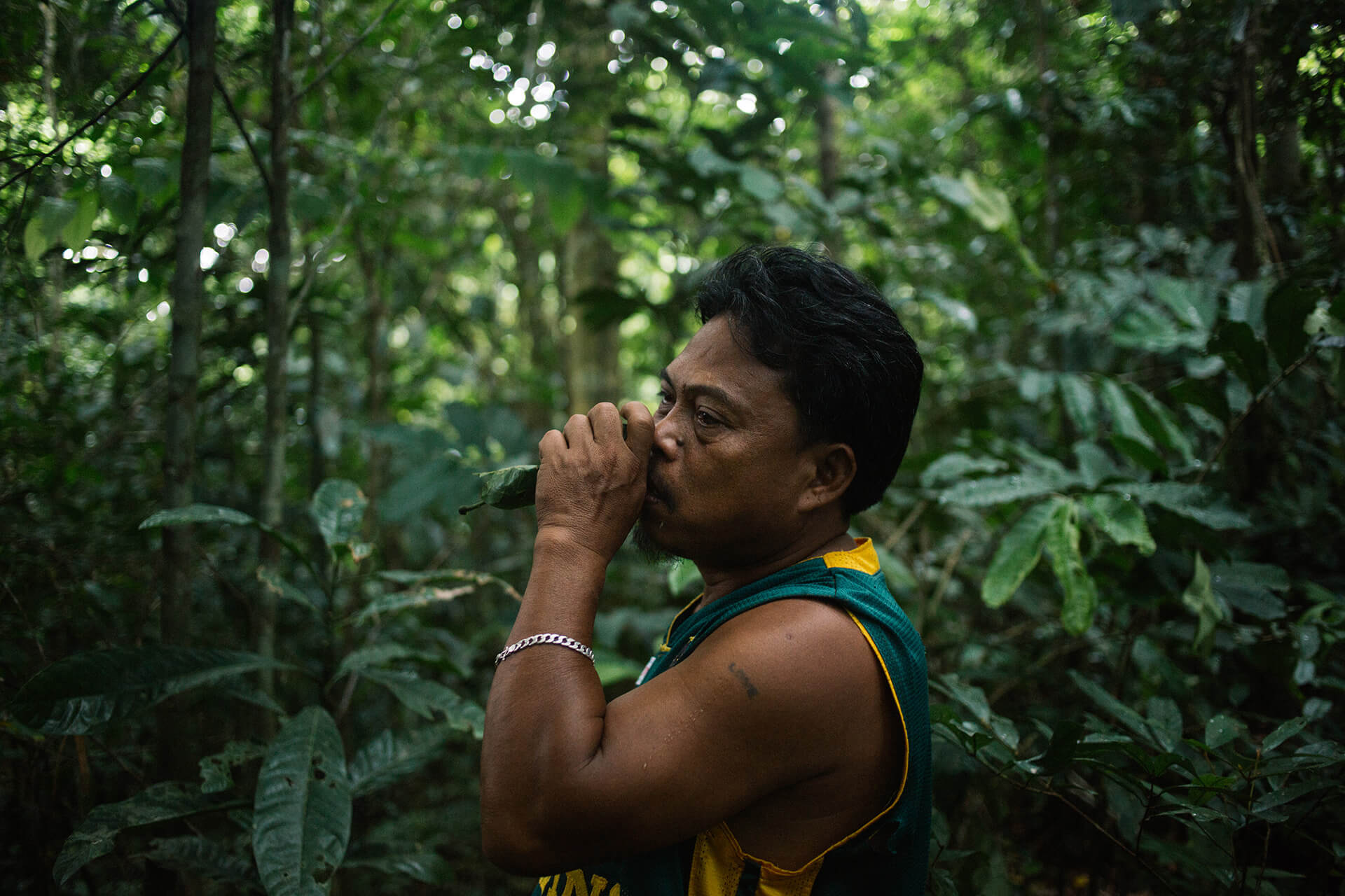 Noel Torremocha uses tastes and smells to identify and categorize medicinal plants.