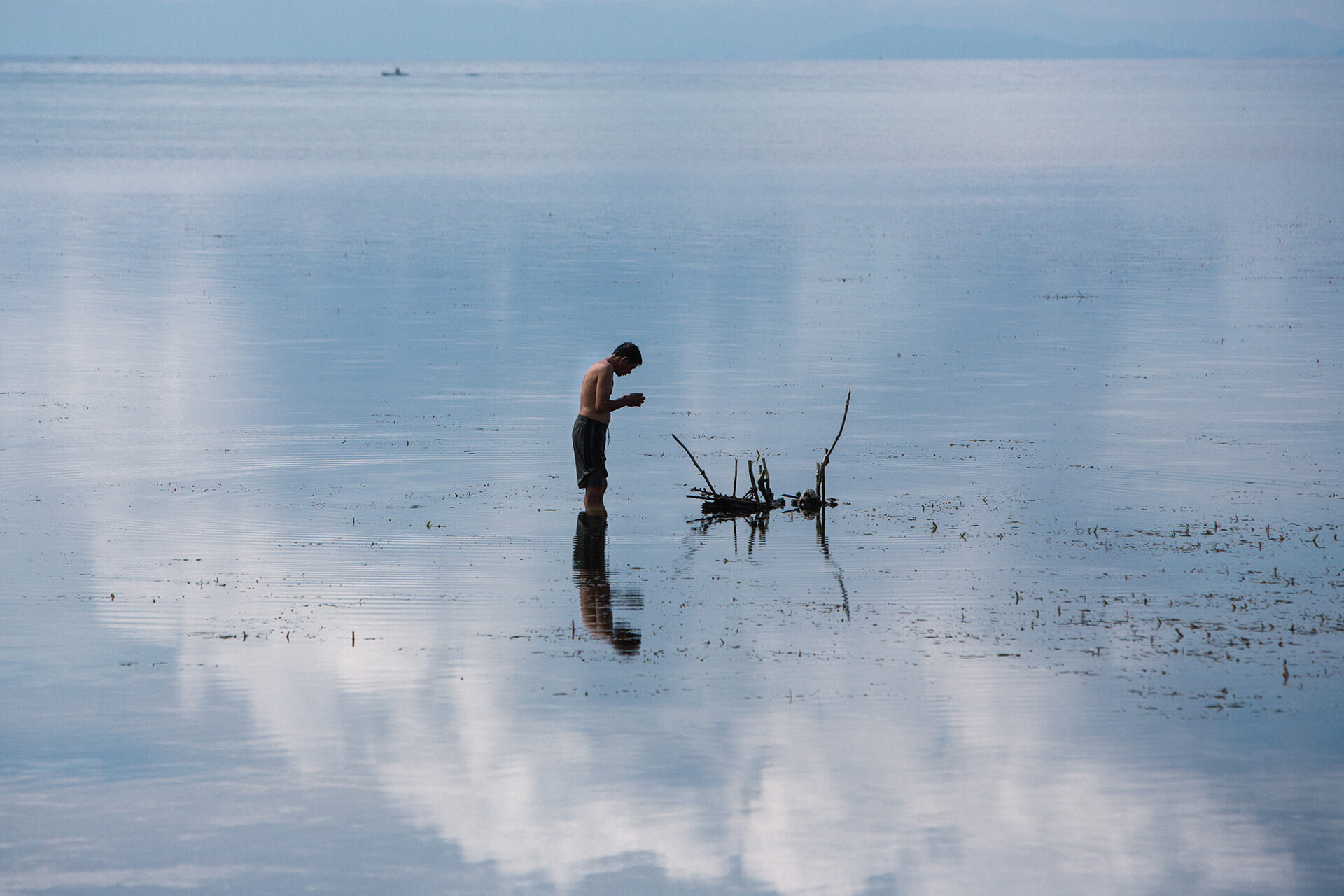 A man soaks coconut fronds in the ocean in preparation for use as a building material.