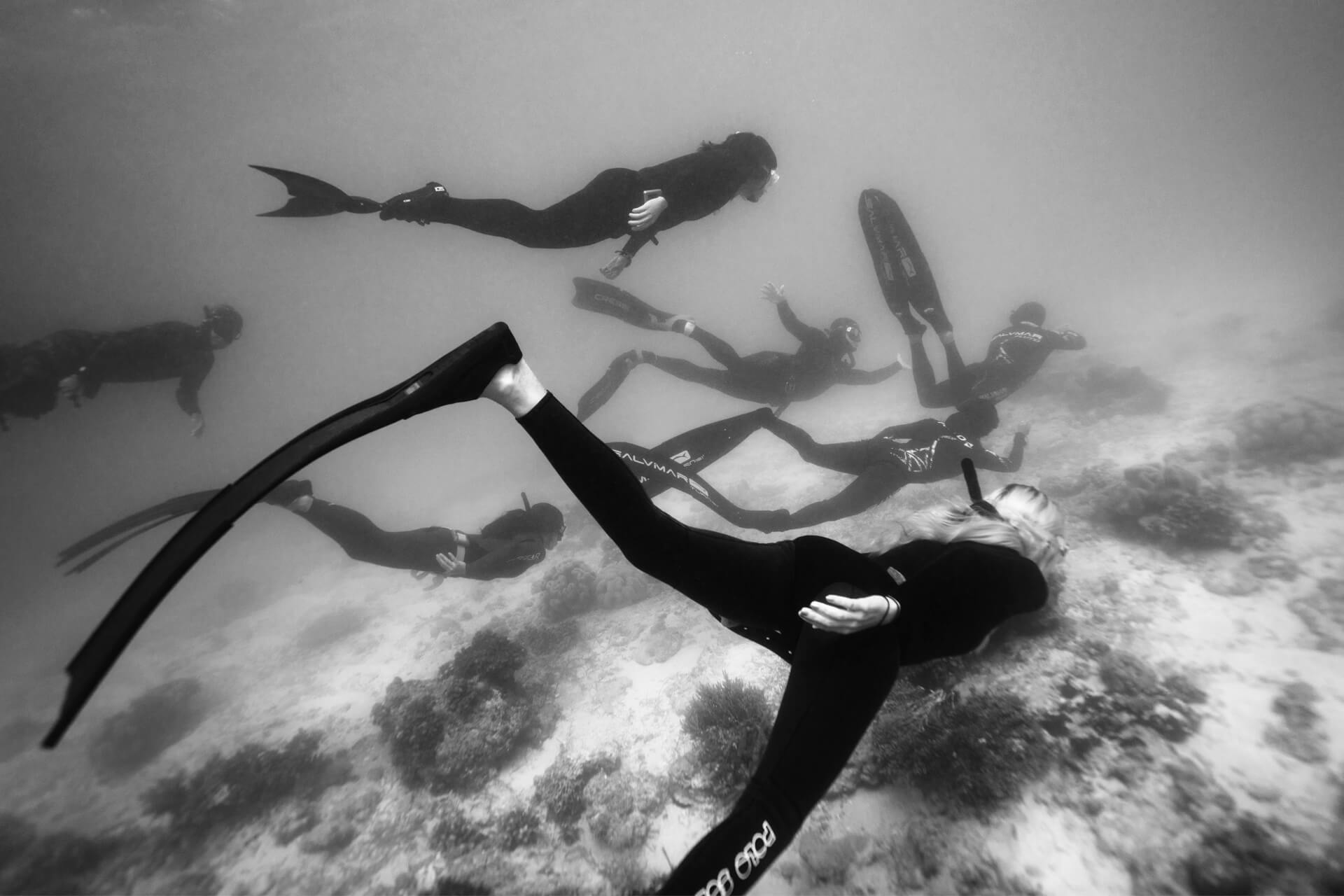 a school of freedivers swimming underwater in black and white