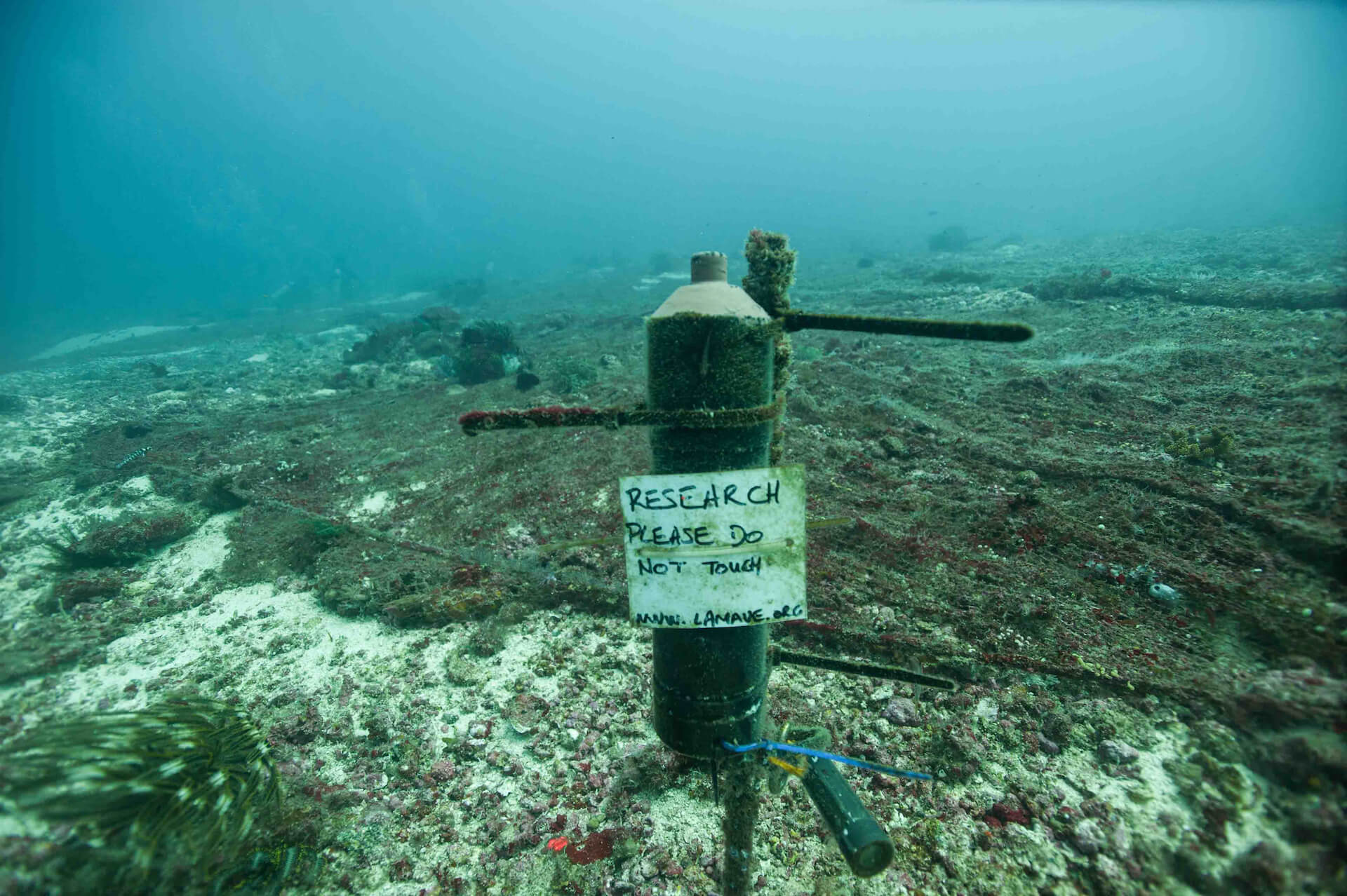 An underwater research site labeled 'do not touch'