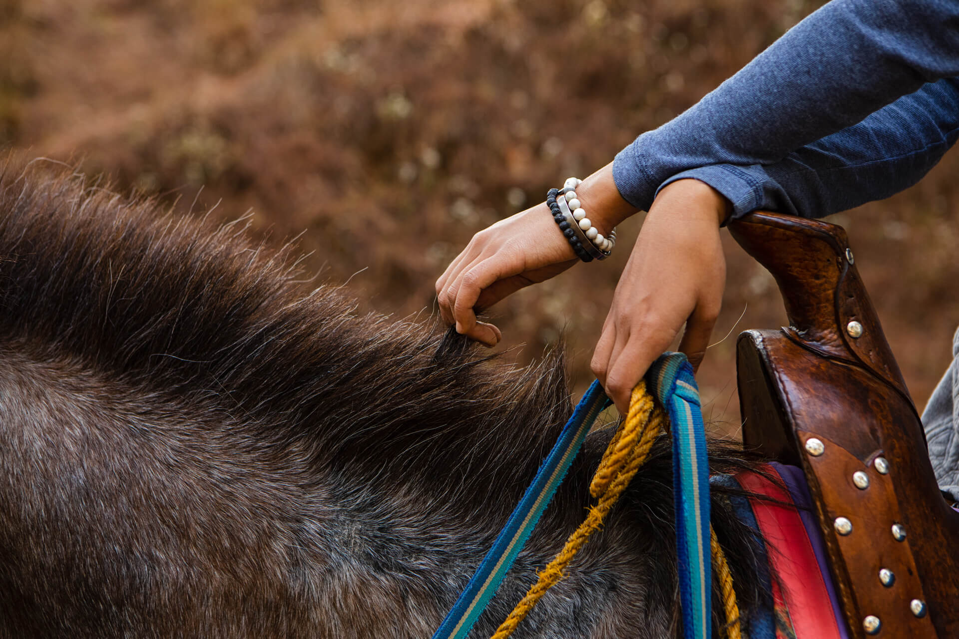 Up north in Baguio, Solana Perez knows how to embrace the wild, having grown up with horses all her life.