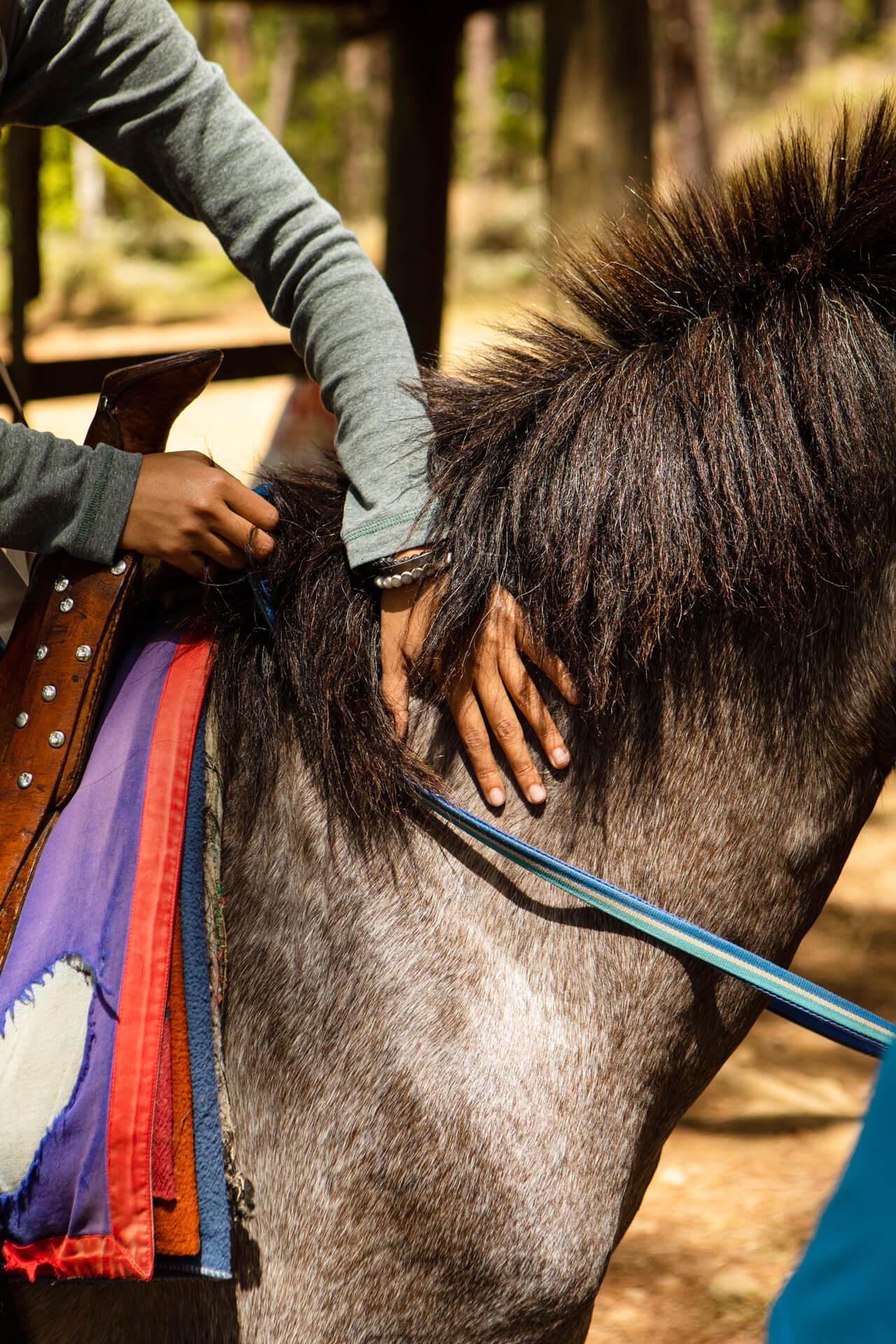 Solana Perez prepares to ride a horse named Raincloud