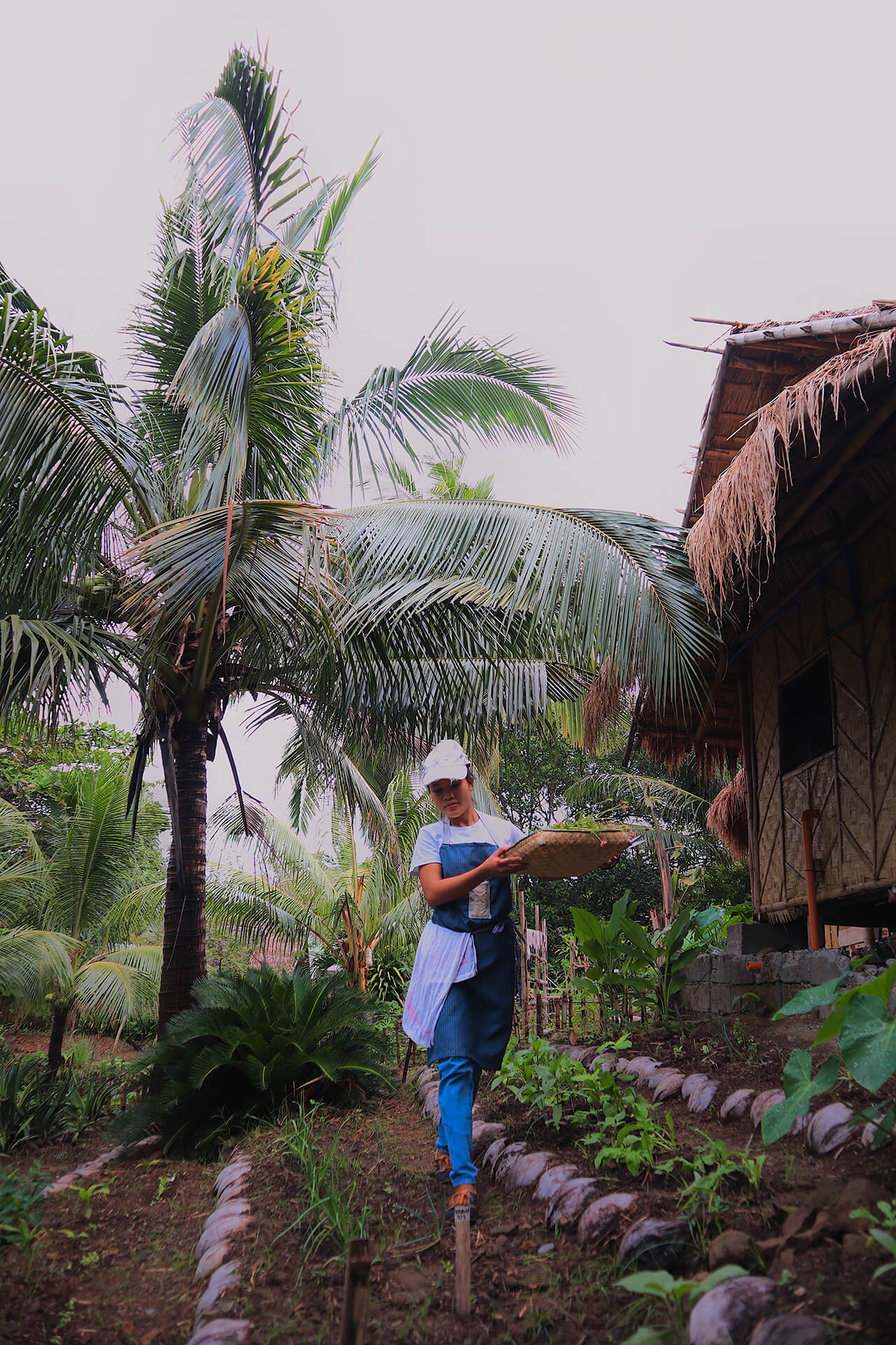 A worker harvests fresh produce in the gardens at Alpas