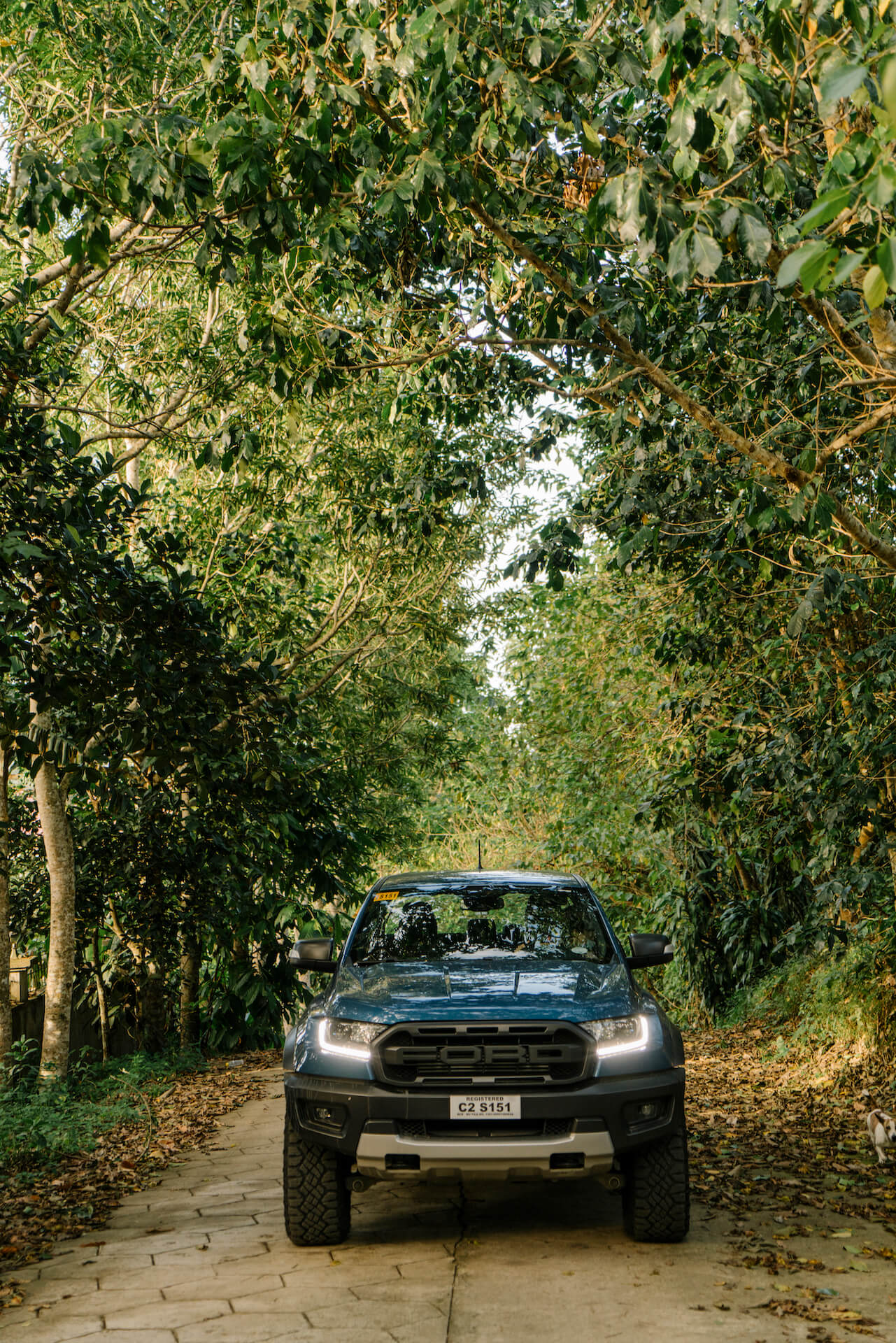 The Ford Raptor parked on a cement path lined with trees