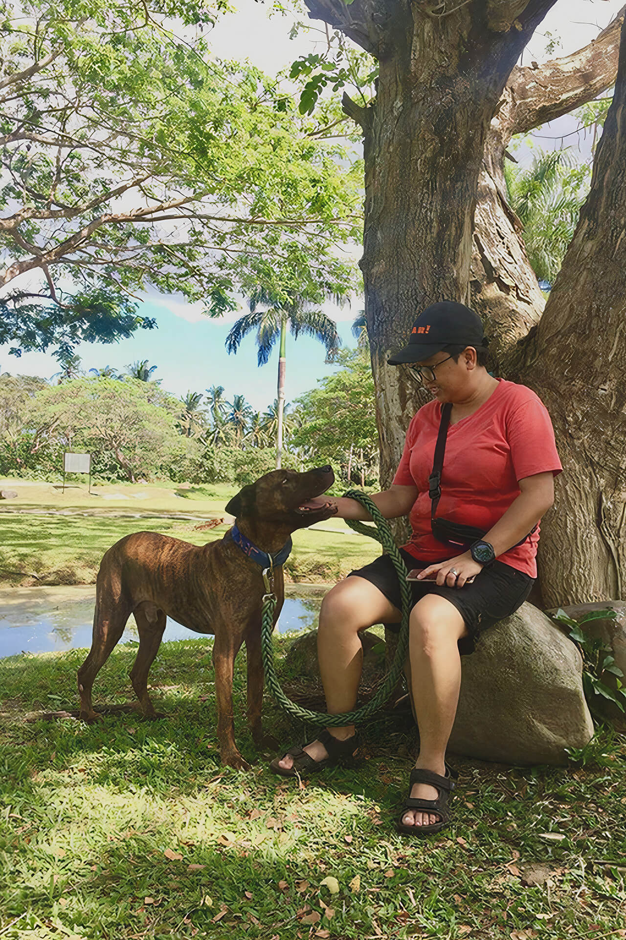 a happy rescued pitbull and its new owner taking a break under a tree at the Sanctuary