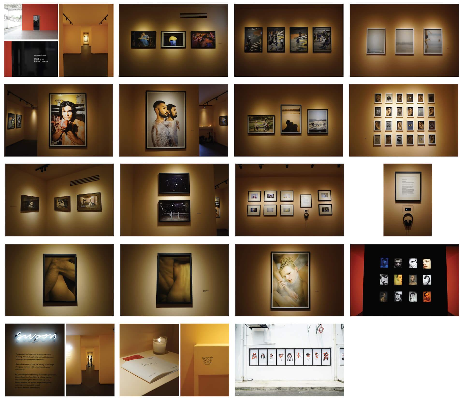 Art on display at Tarzeer Pictures' Swoon exhibit