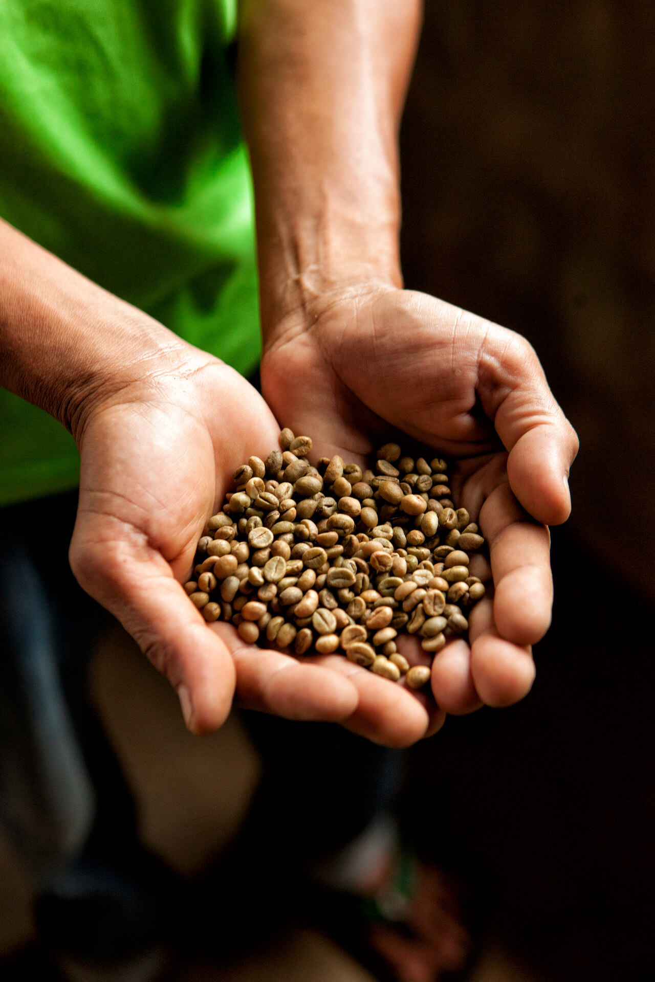 A farmer holds out coffee beans