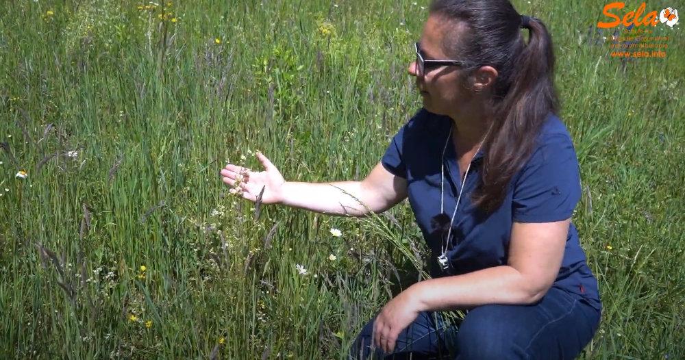 Dunja Al Jabaji erklärt die Botanik auf unterhaltsame und verständliche Weise