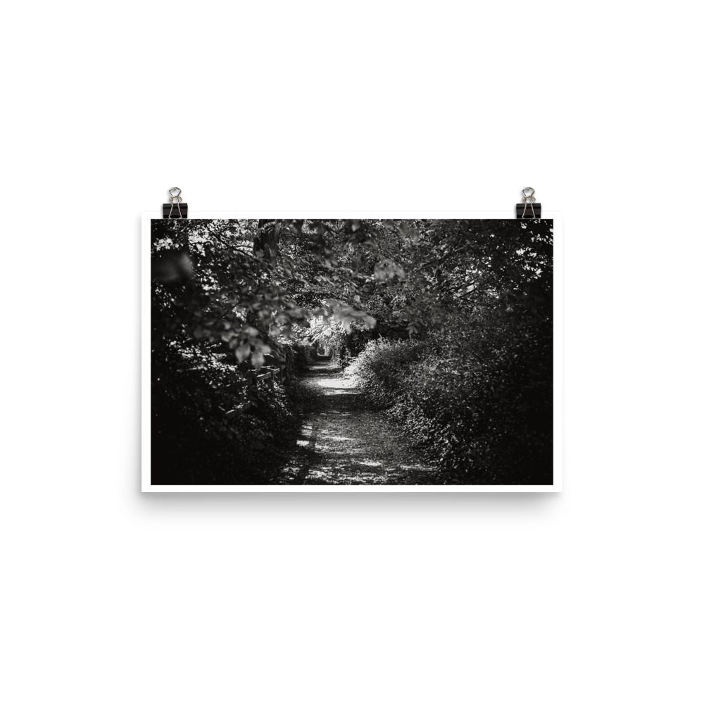 Black and white print of a woodland path