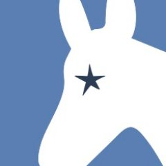 Blue Action Dems