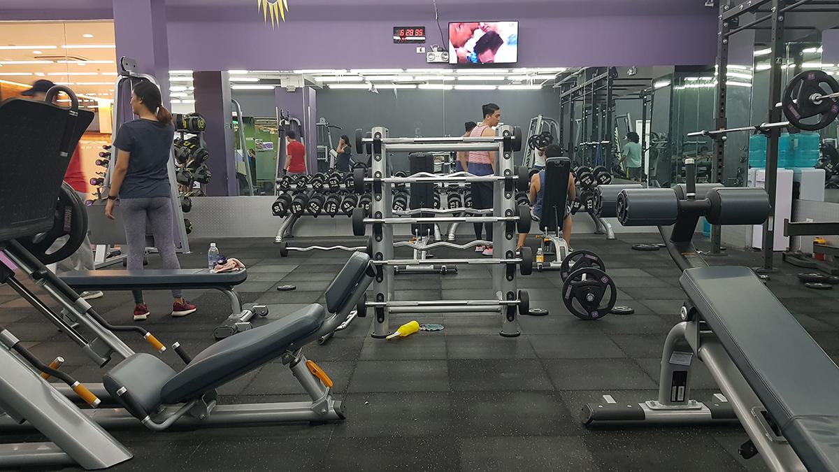 standard gym