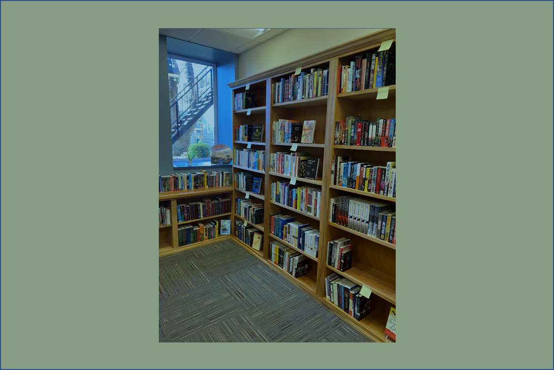 photo of mini library
