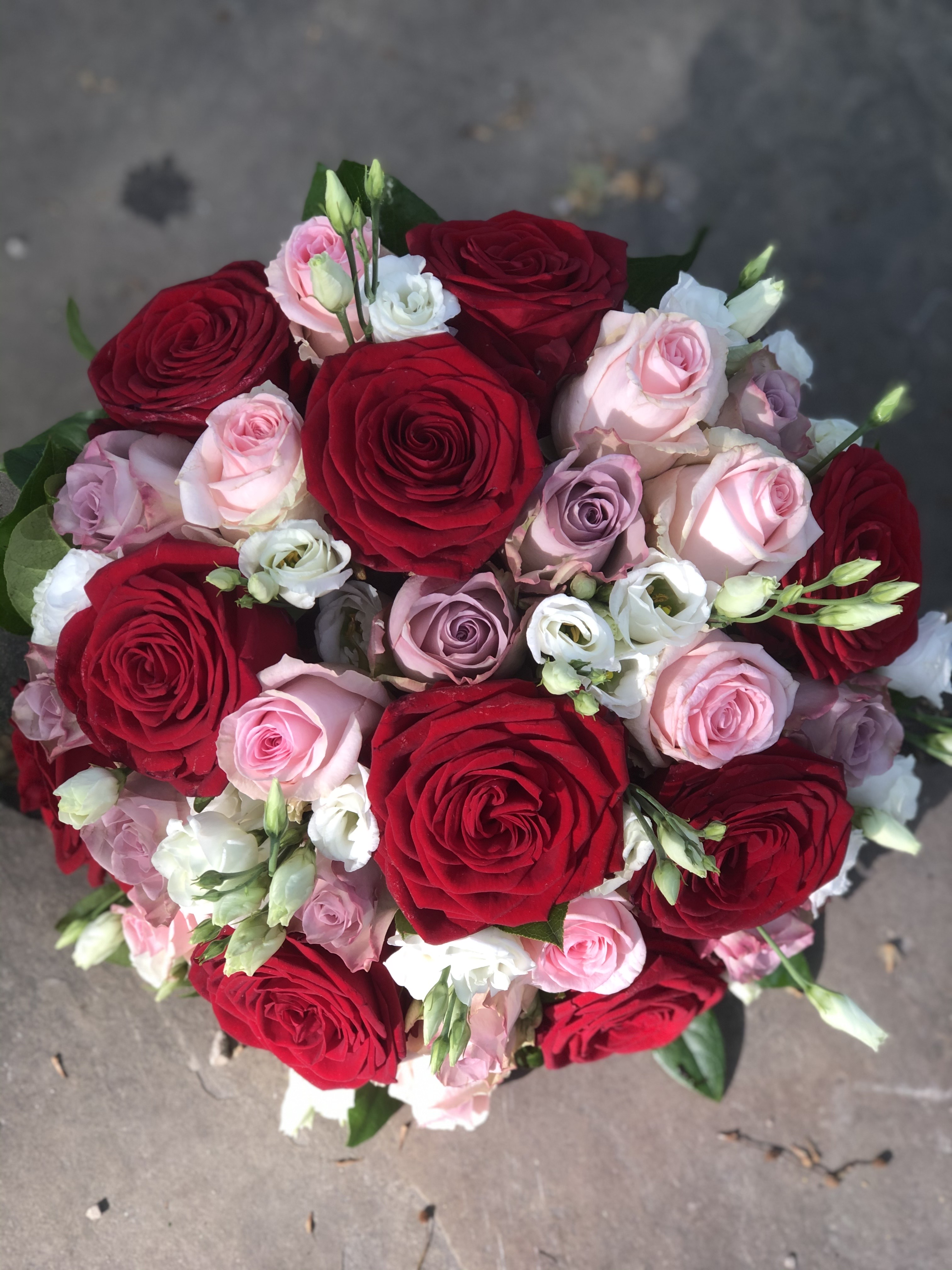 Oh My Roses