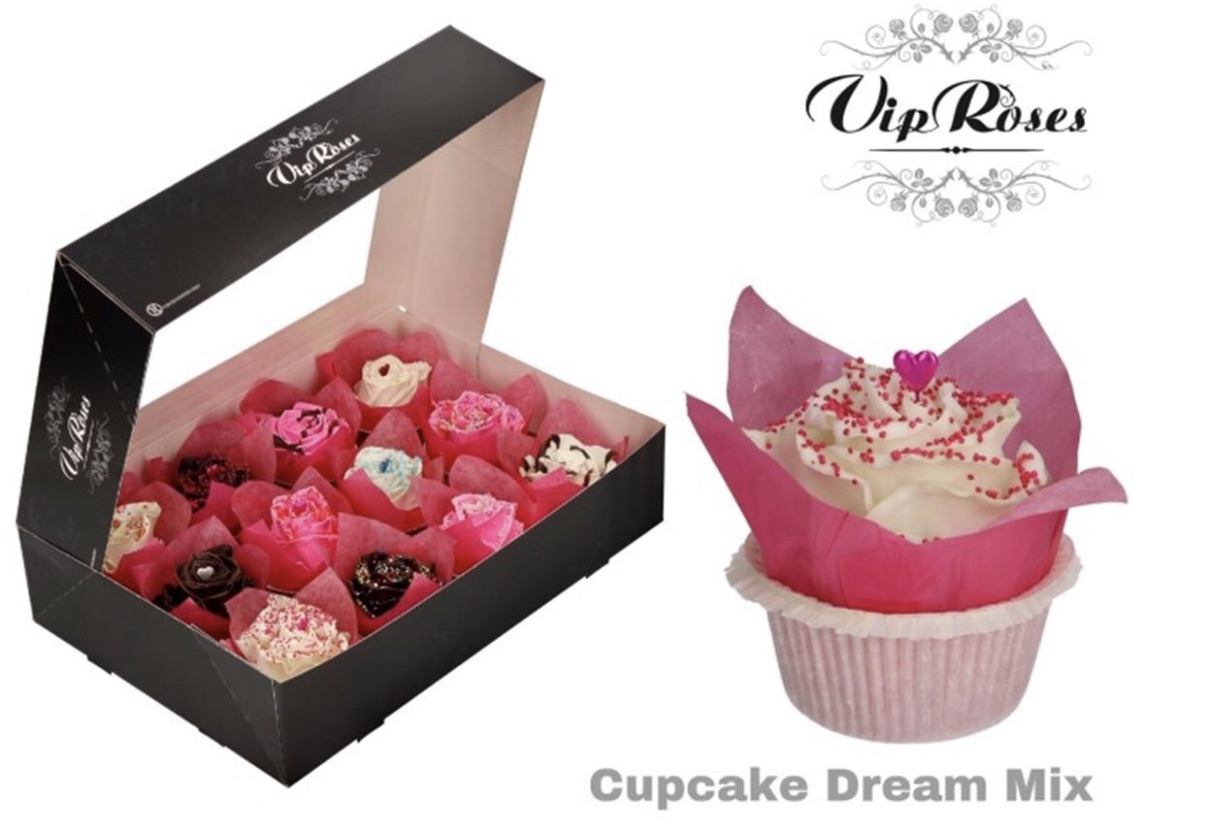 Everlasting waxed Cupcake roses