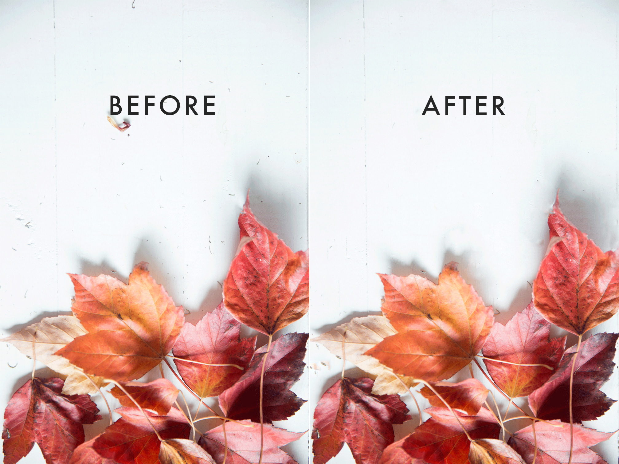 Want bright clean photos for your blog? Here is a 2 minute tutorial on how to achieve clean flawless photos using photoshop!