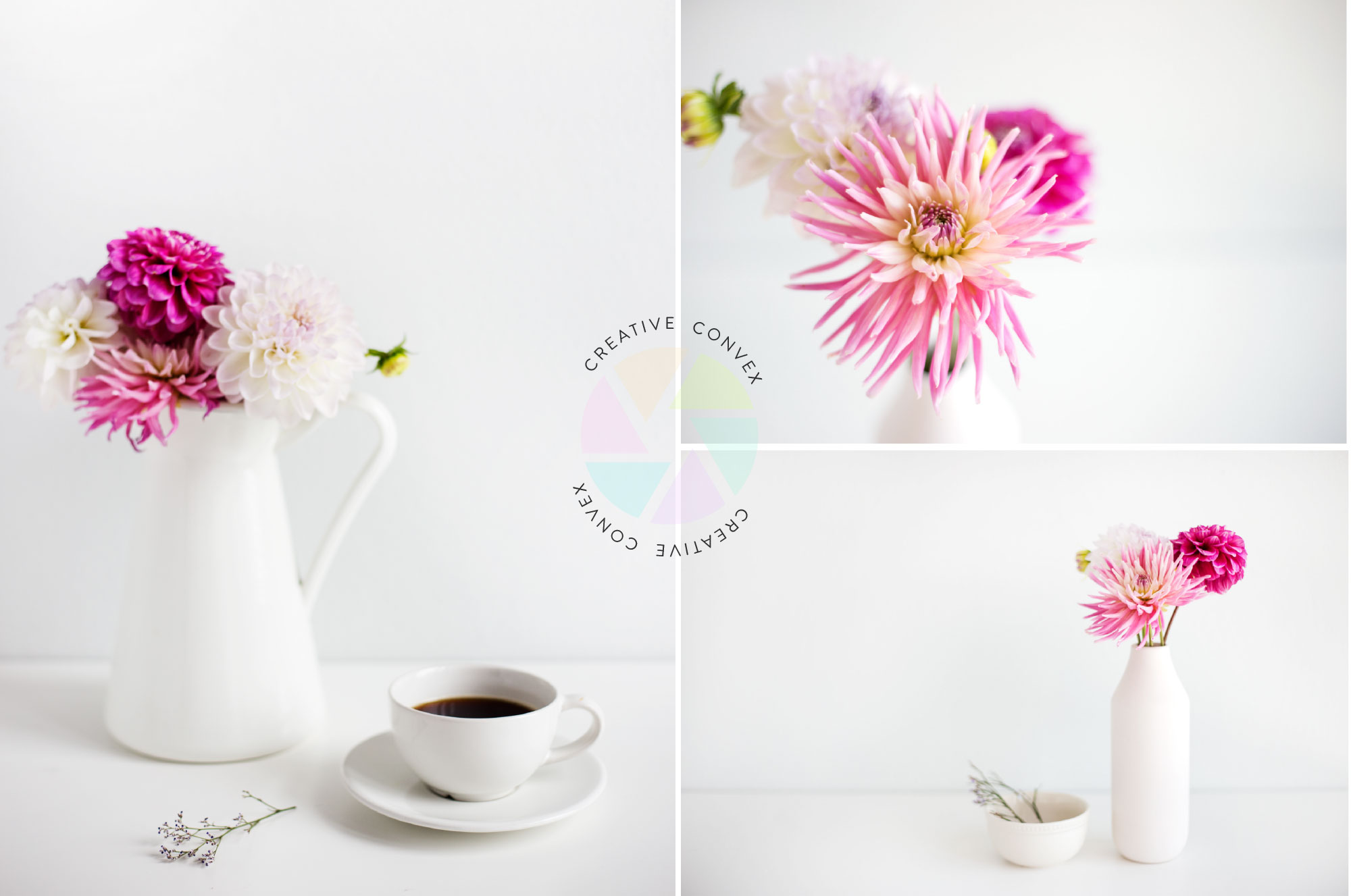 Struggling to find the right photos for your brand? The Creative Convex shop is your perfect companion to elevate your brand and business through high quality visuals! Click to check it out here now >>