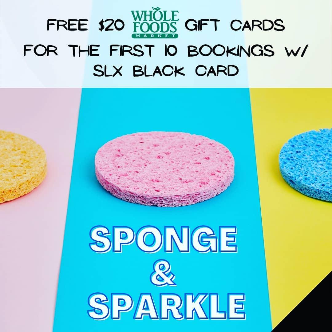 Sponge and Sparkle