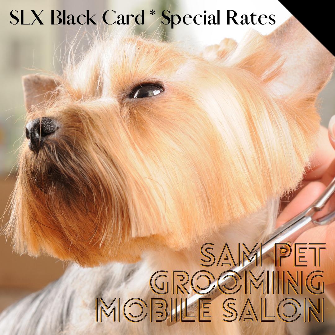 Sam Pet Grooming