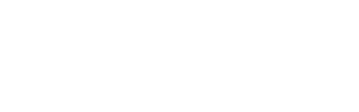 FutureView Systems Logo