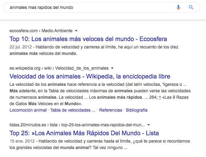 búsqueda google animales más rápidos del mundo