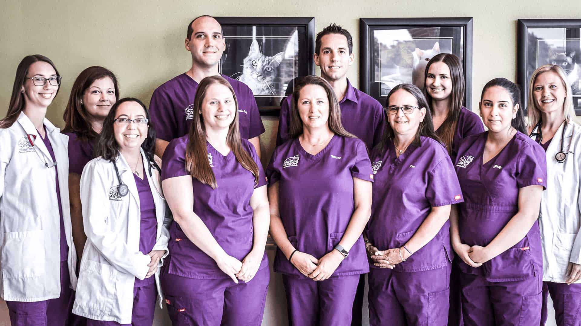 The staff and doctors of The Cat's Meow Veterinary Hospital.