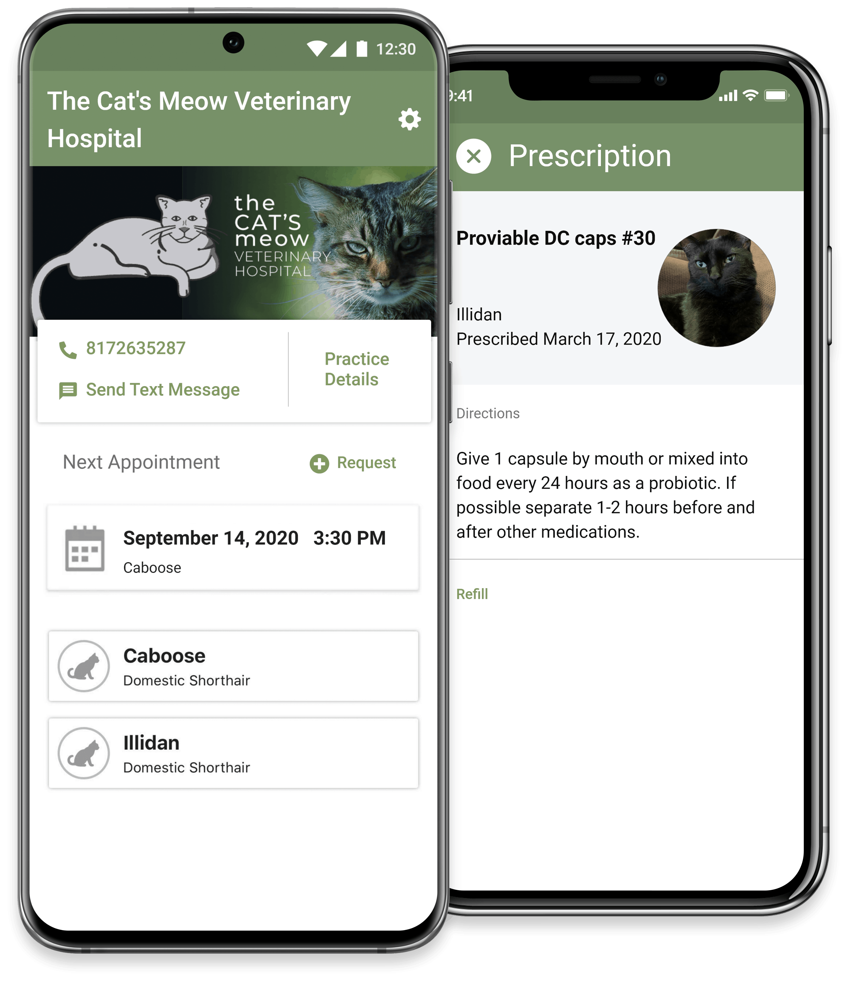 The Cat's Meow Veterinary Hospital on the Pet Health Network app on Google Play and the App Store