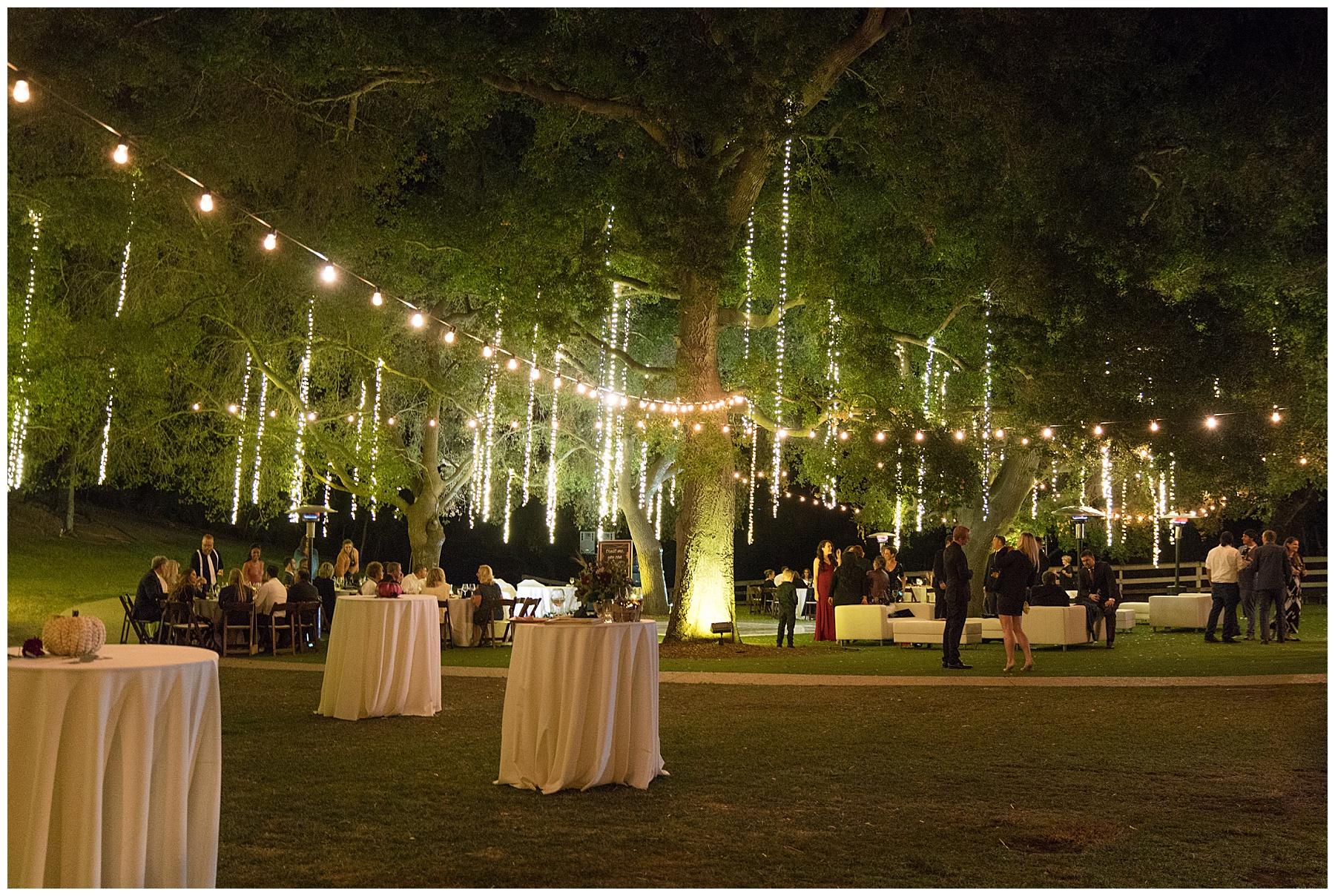 lighted willow tree wedding
