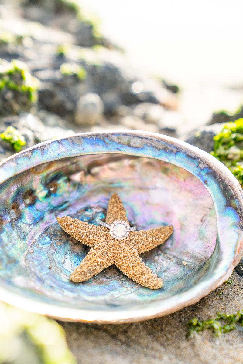 wedding ring a sea shell