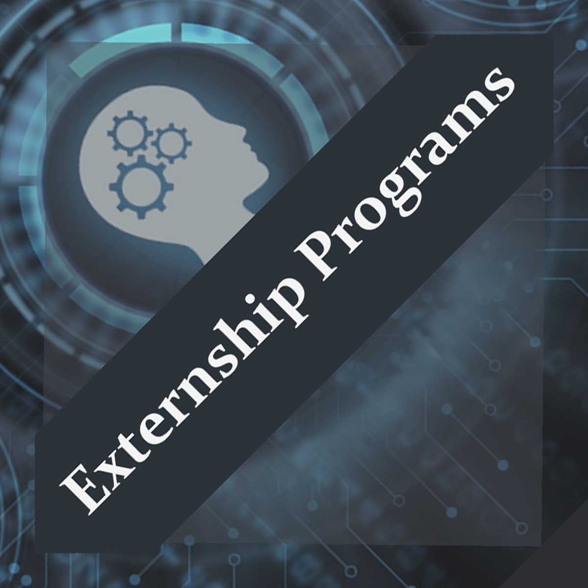 Externship Training Program