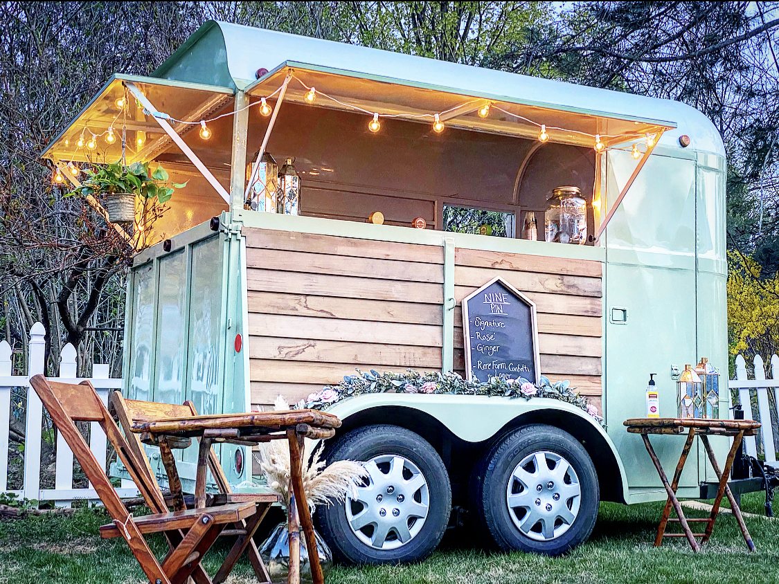 A mobile wedding bar with string lights and a hanging plant