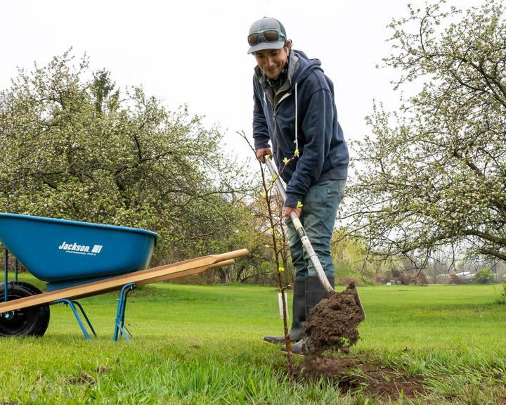 A photo of a man with a hat on digging a hole. Wheel barrow in the background