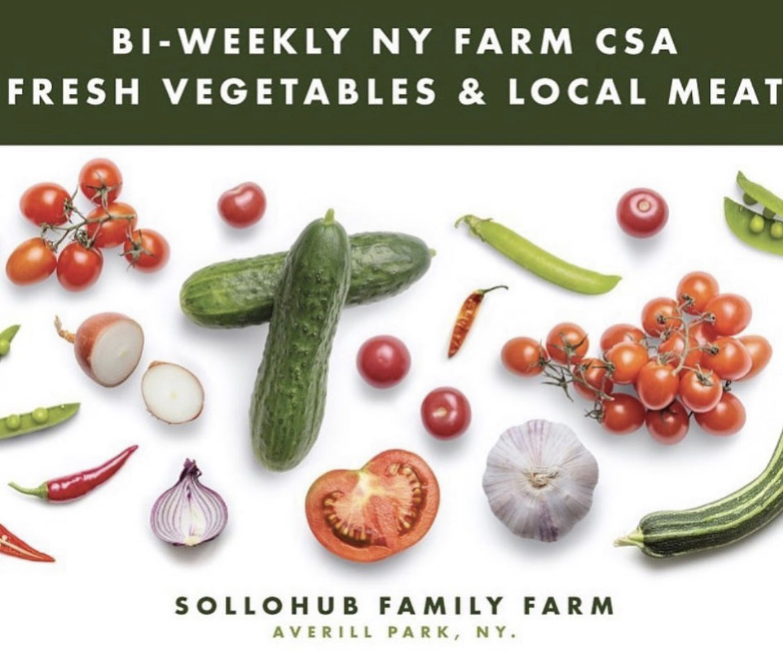 Image reads bi-weekly NY farm CSA fresh vegetables and local meat. Sollohub Family Farm. Averill Park, NY. Image and a mix of local vegetables such as local cucumbers, local tomatoes, local garlic, local peas, and more.