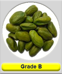 peeled pistachio kernel grade B