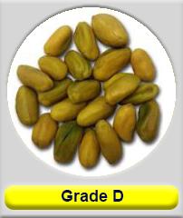 Green Shelled  pistachio grade D