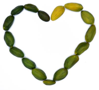 green pistachio heart shape