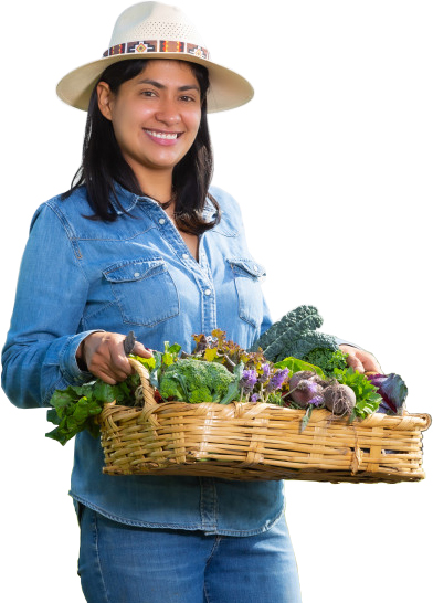 The Farm Woman.