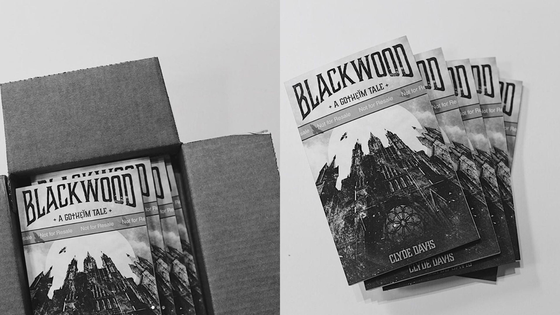 photographs of the final proof prints of the blackwood gotheim novels