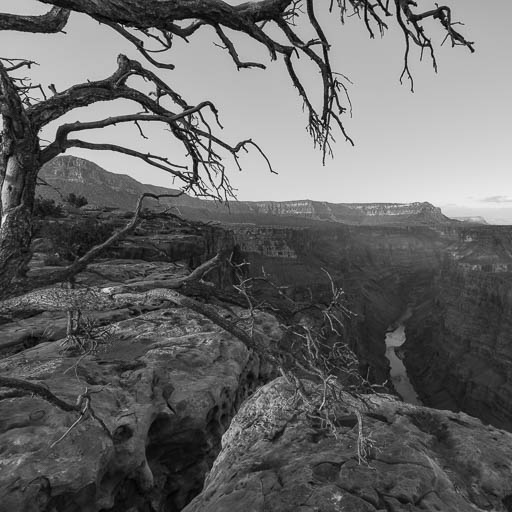 Toroweap Overlook at the Grand Canyon