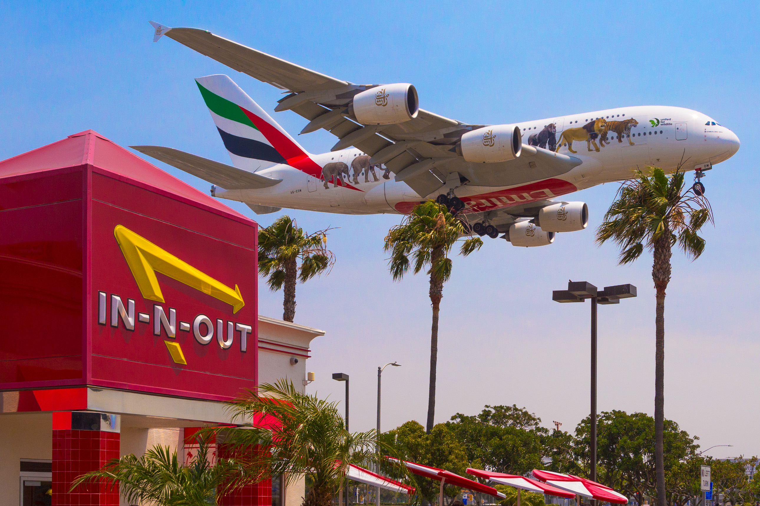 Plane Spotting at the LAX In-N-Out Burger