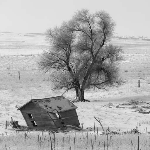 Leaning shack in South Dakota