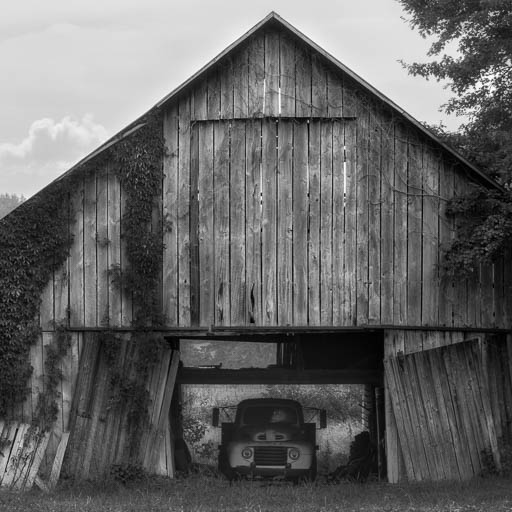 Kentucky Tobacco Barn with a 1948 Ford F1 Truck
