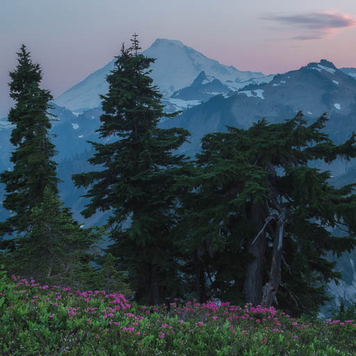 Mount Baker after sunset from Artist's Point