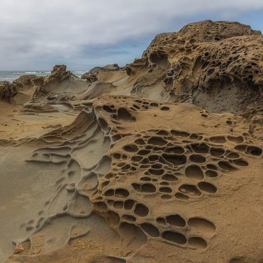 Tafoni formations at Bean Hollow Beach