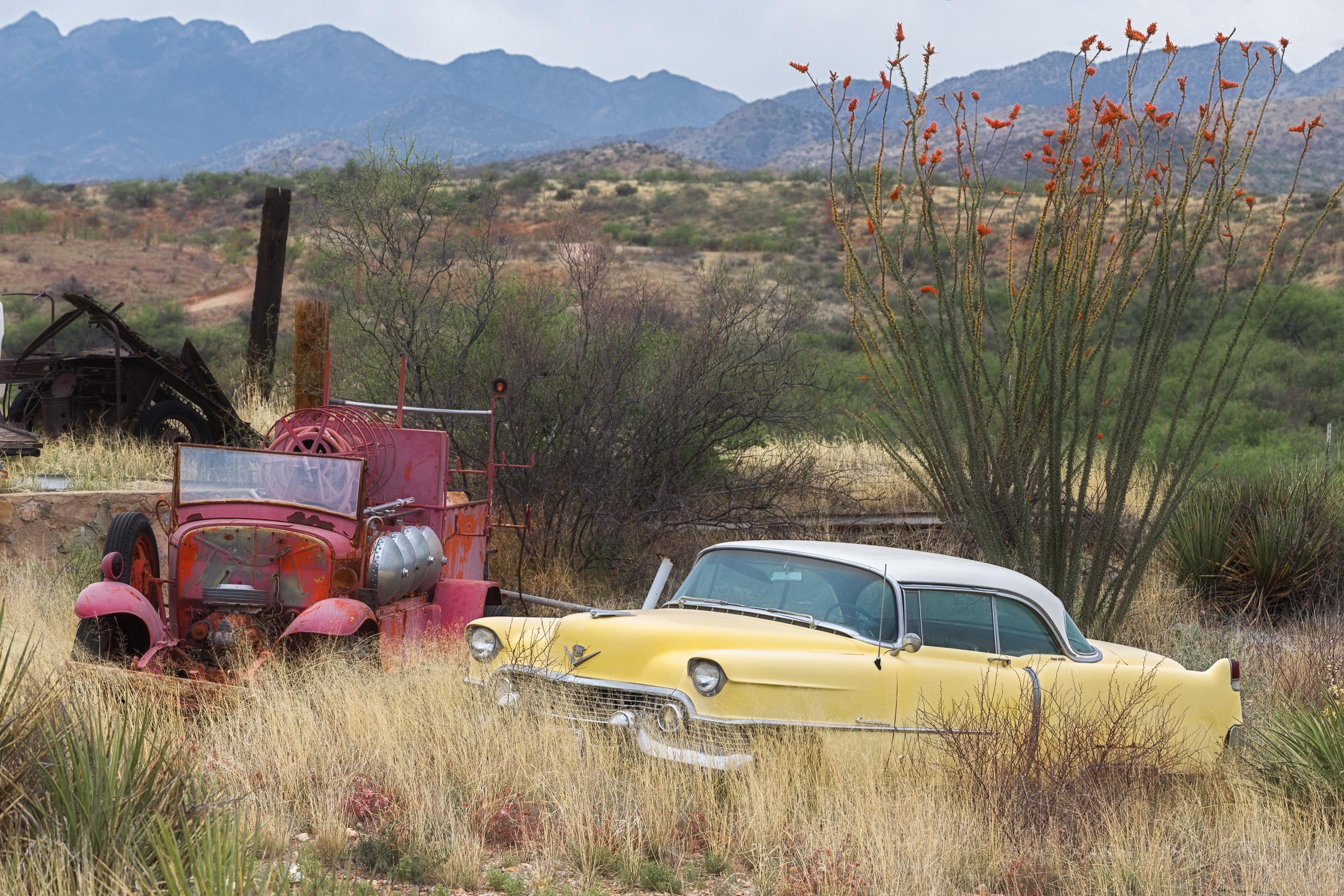 1954 Cadillac decaying on an Arizona farm