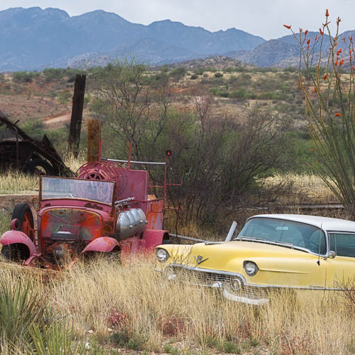 1954 Cadillac decaying on an Arizona farm