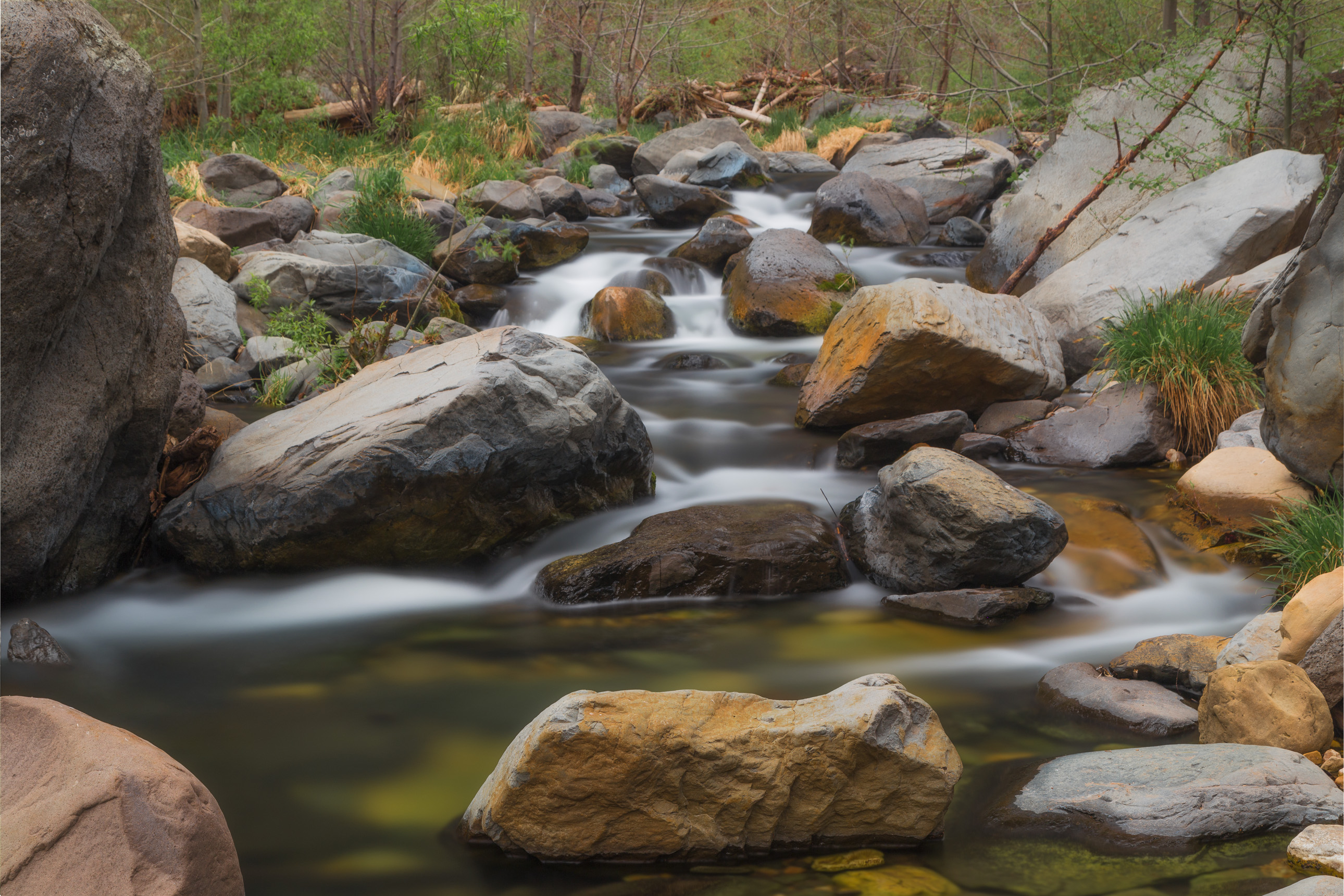 Oak Creek in Sedona from Bootlegger Campground