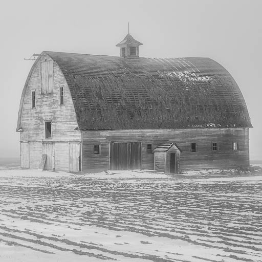 Abandoned white barn in the snow