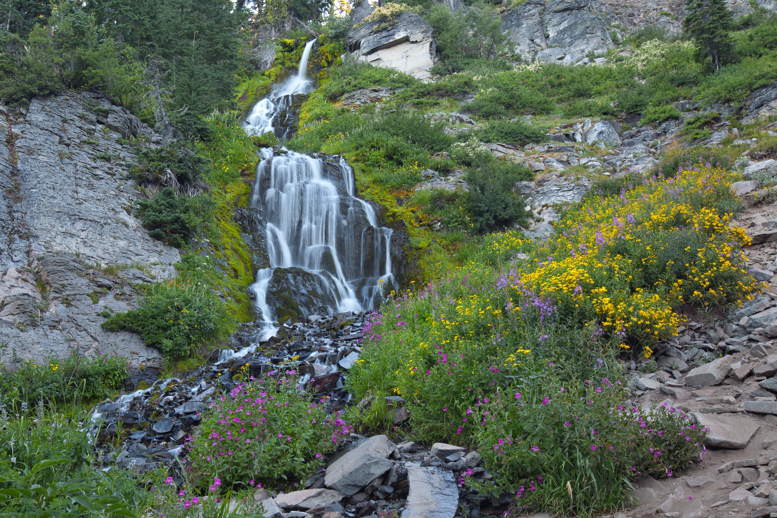 Vidae Falls in Crater Lake National Park