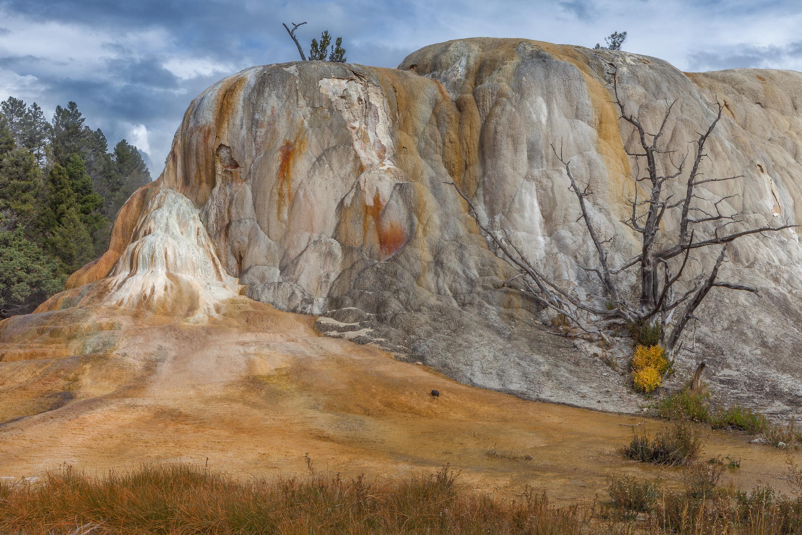 Orange Spring Mound in Yellowstone